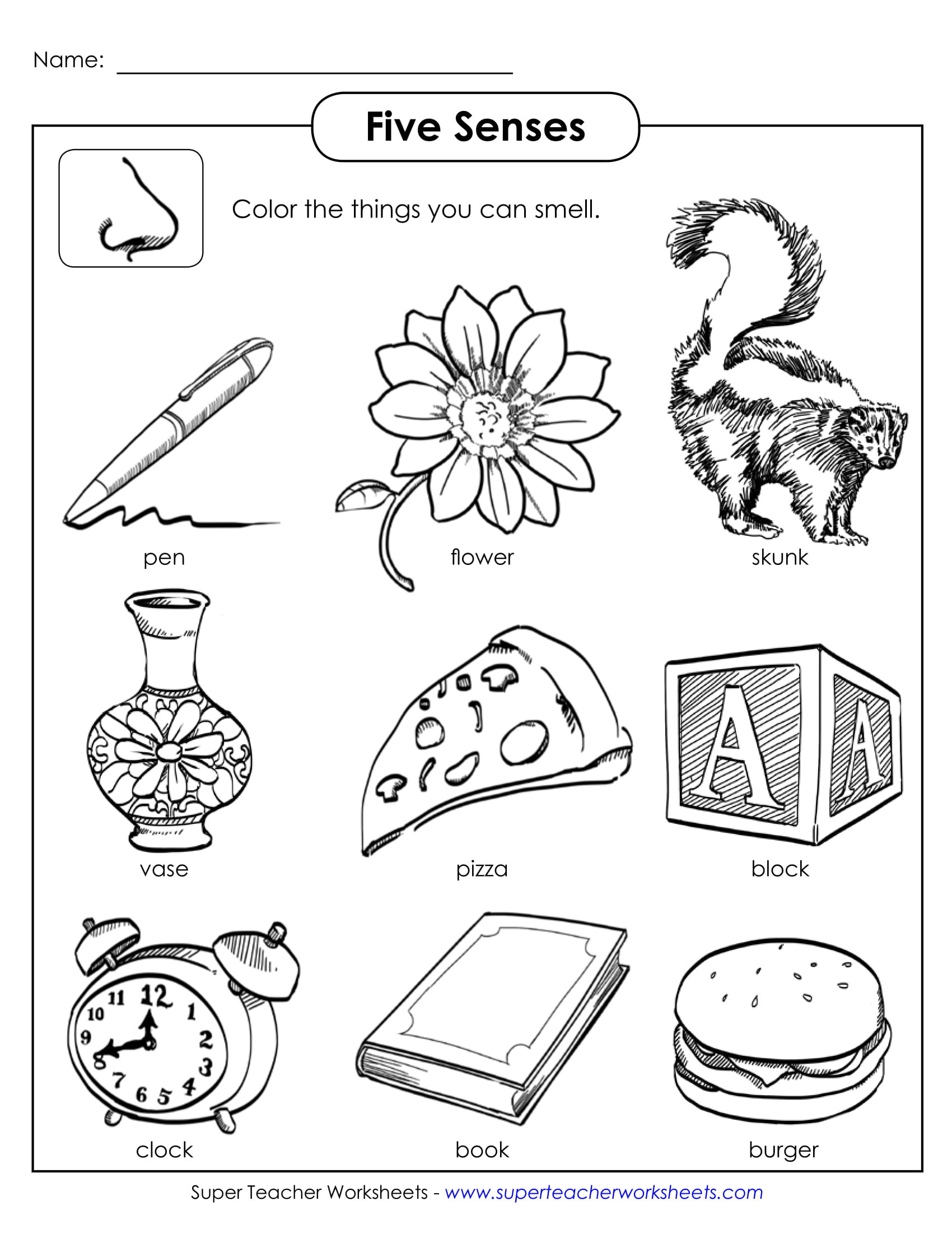 Five Senses Kindergarten Worksheet