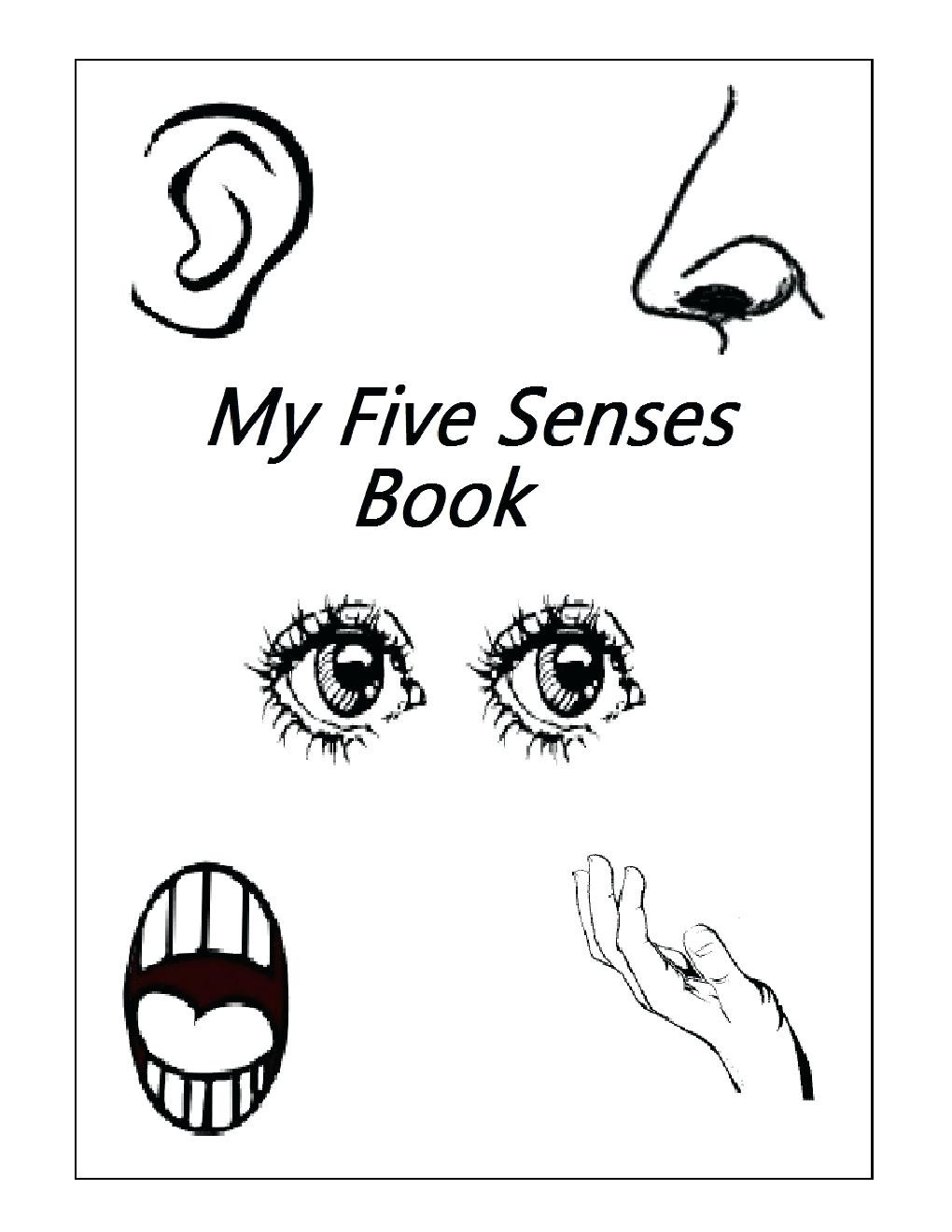 Five Senses Worksheets Kindergarten