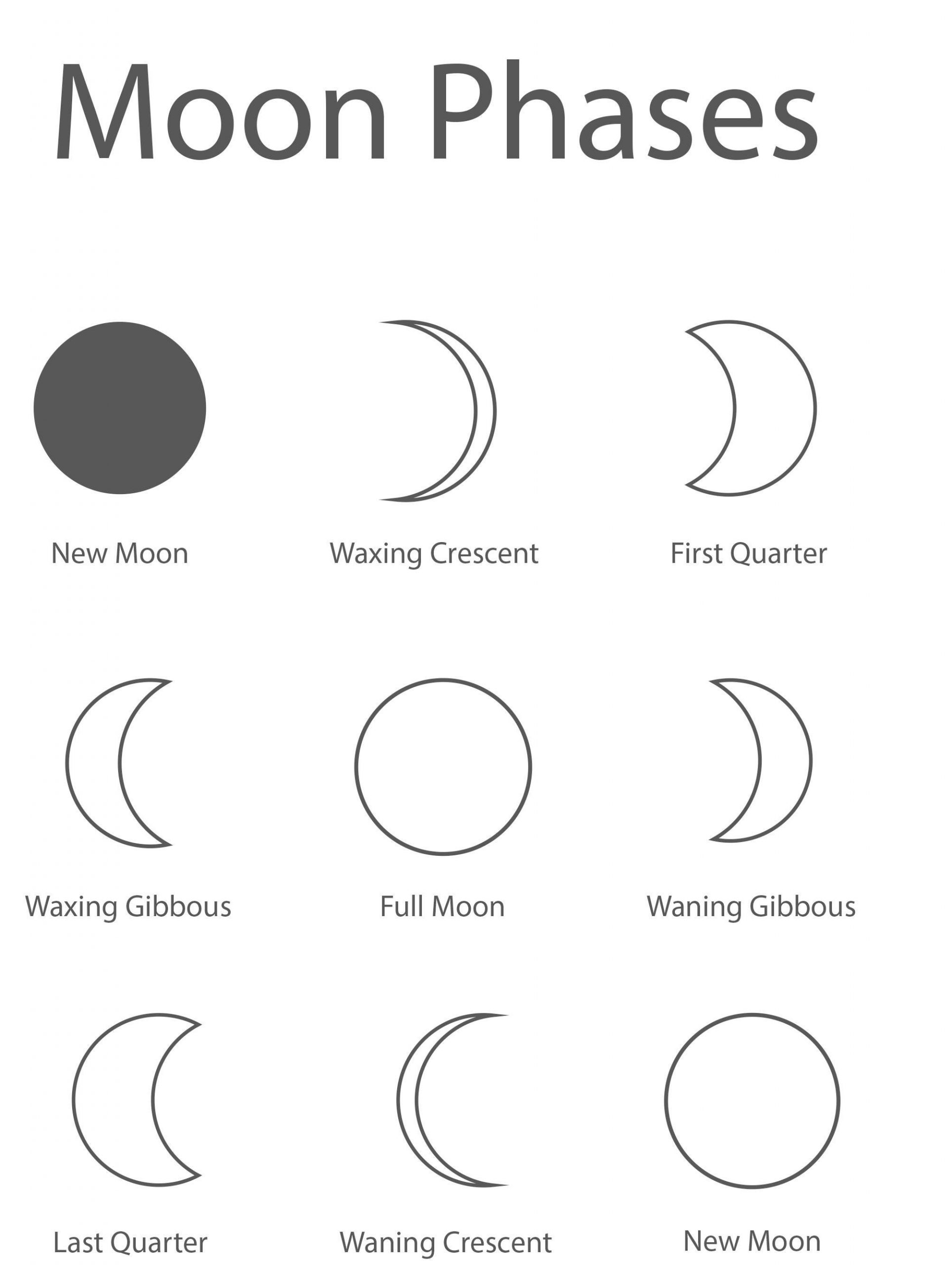 Free Moon Phases Worksheet Printable