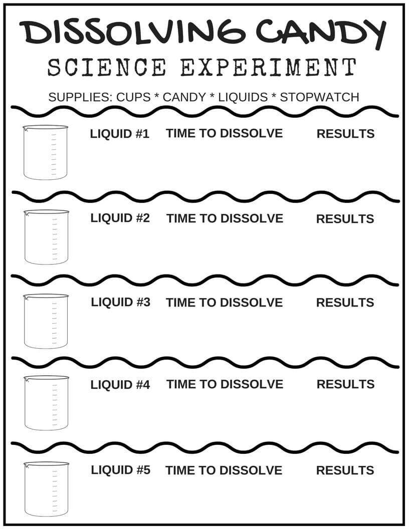 Kindergarten Science Worksheets Free