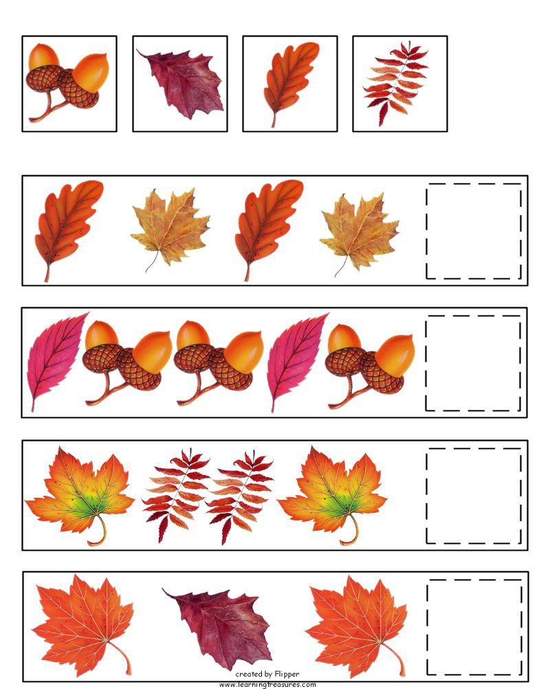 Leaf Worksheets for Kindergarten