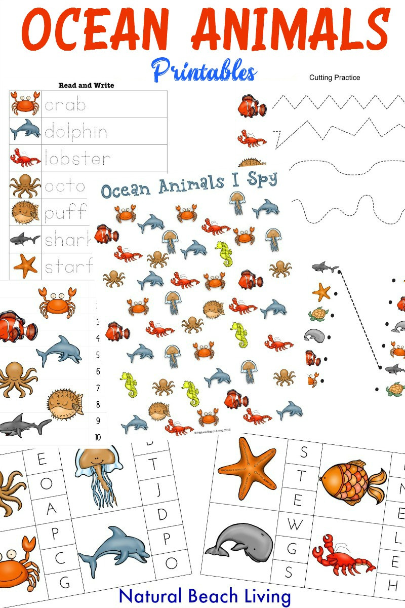 Ocean Worksheets for Kindergarten