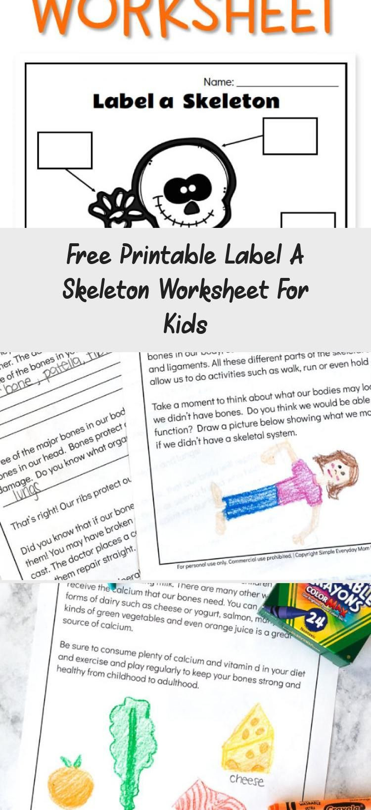 Skeleton Worksheet for Kindergarten