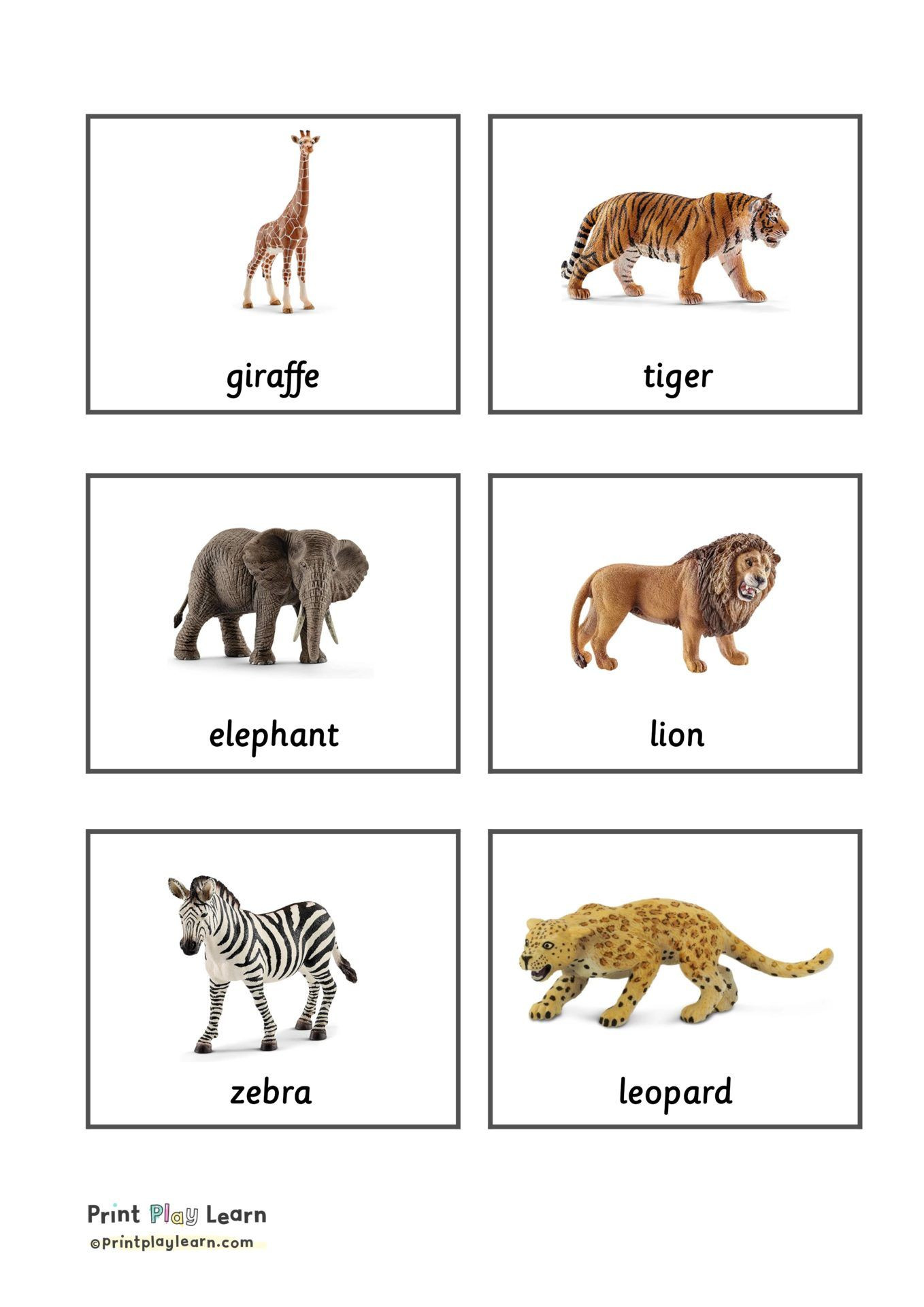 Free Printable Animal Classification Worksheets