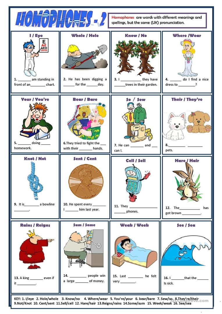 Free Printable Homophone Worksheets